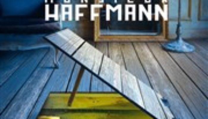 Adieu Monsieur Haffmann au Théâtre Rive Gauche